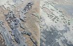 AURORA KS017 GREY / NATURAL